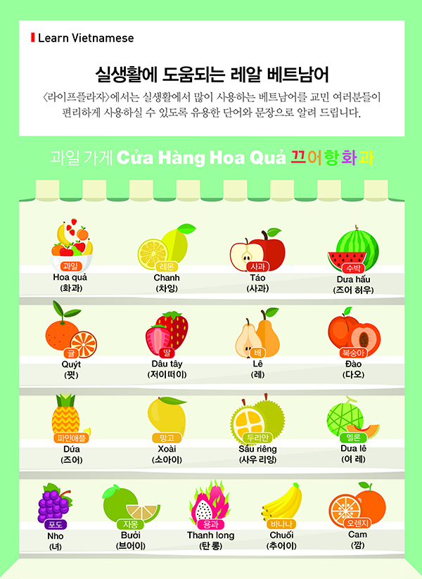 Learn Vietnamese Fruit - 264